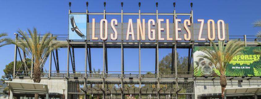 Los Angeles Zoo © Chon Kit Leong | Dreamstime.com