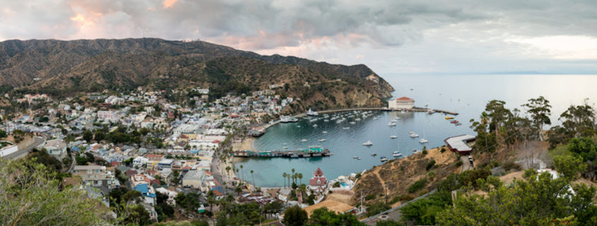 Catalina Island, a ferry ride from Los Angeles, California