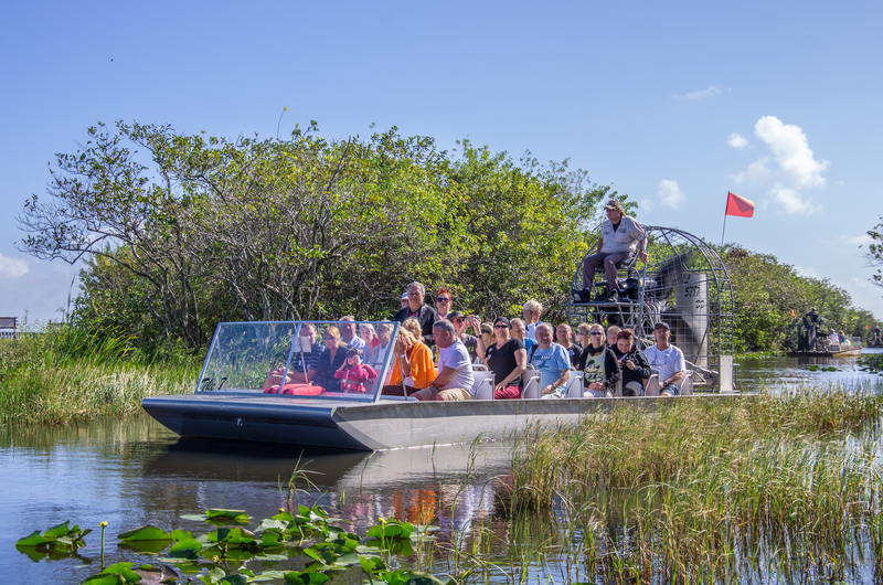 Everglades © Fabio Formaggio | Dreamstime.com