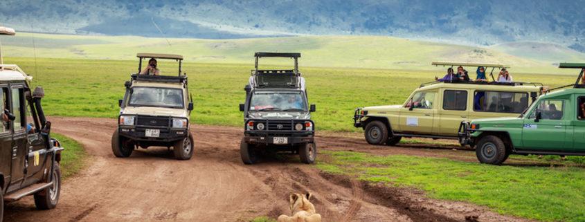 Tourists on Safari in Africa © Kanokrat Tawokhat   Dreamstime.com