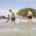 Dunedin Honeymoon-Island © VisitStPeteClearwater.com