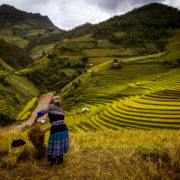 Ha Giang Rice Terraces © Exodus Travels