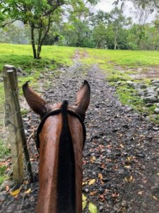 Horseback Riding © Rina Nehdar