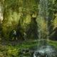 Brice Creek Trail Trestle Falls © Colin Morton, 2017, Inn at The 5th