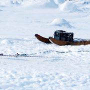 Dogsledding © Carolyne Pehora | Dreamstime.com