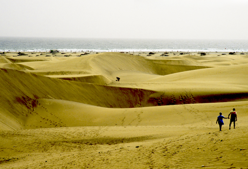 las Palomas Dunes, Playa Ingles Gran Canaria Photo: Stillman Rogers