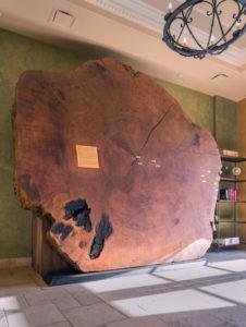 Museum. Photo: Allegretto Vineyard Resort