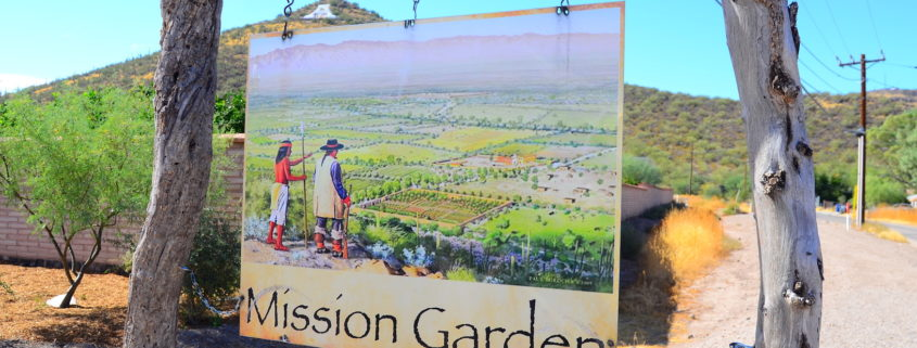Tucson Mission Garden