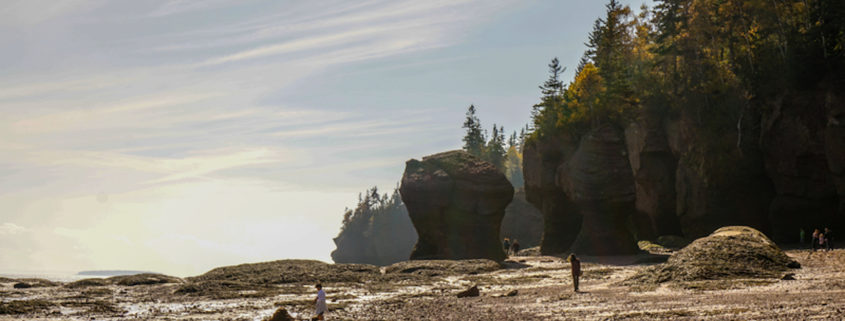 Bay of Fundy. Photo: Christopher Heil | Dreamstime.com