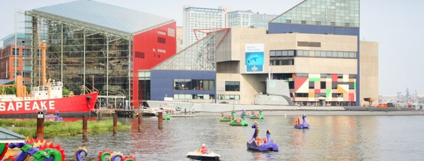 Paddleboats outside of the Baltimore National Aquarium.