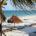 Banyan Tree Mayakoba Beach.