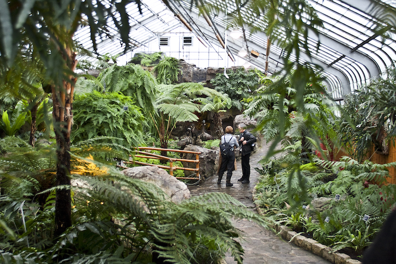 Inside the Conservatory, Montreal Botanical Gardens, Montreal, Canada.