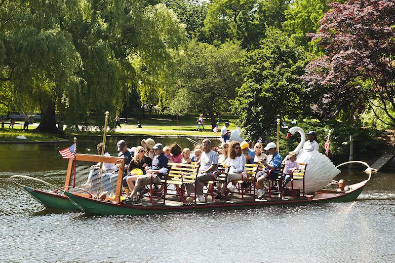 Swan Boat Tours in Boston Massachusetts. Photo: Stillman Rogers