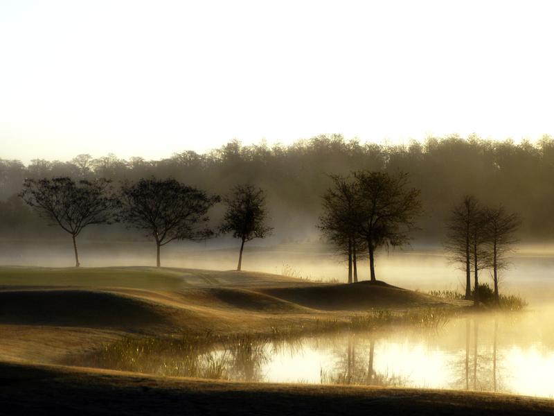 Shingle Creek Golf Club.