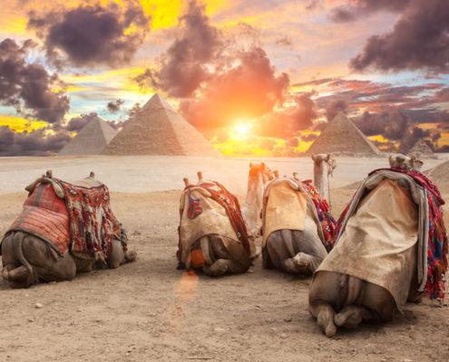 Egypt Cairo - Giza. View of pyramids.
