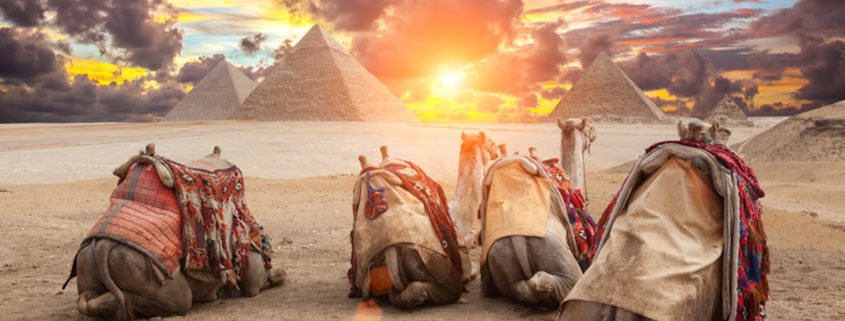 Egypt Cairo - Giza. View of pyramids.