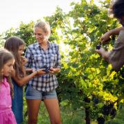 Family walking through California winery.
