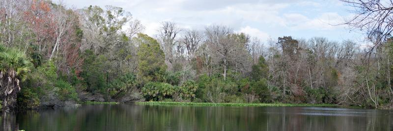 Lower Wekiva River State Park.