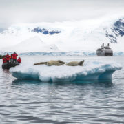 Antarctica, Guests in a Zodiac boat viewing seals with Le Boreal in the background. Photo: Abercrombie & Kent