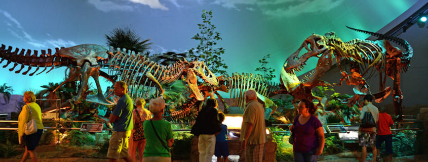 Dinosaur exhibit at the Children's Museum of Indianapolis.