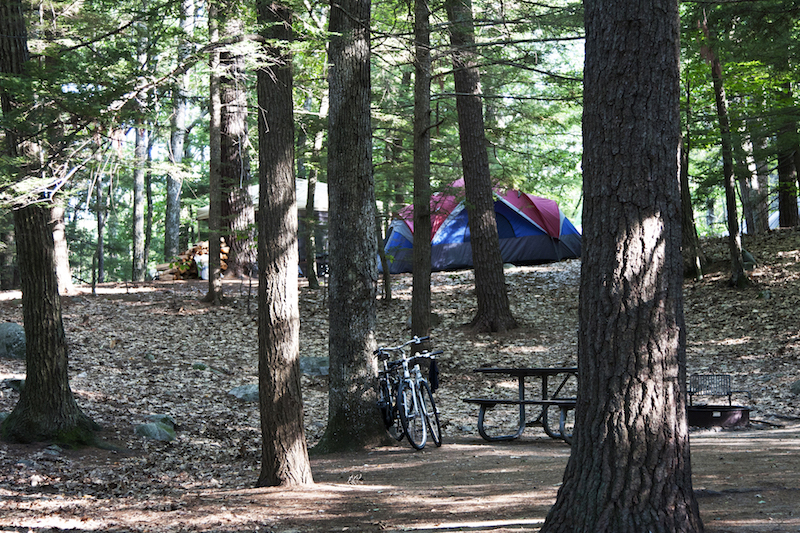 Campsite in New Hampshire at Nottingham, Pawtuckaway State Park.