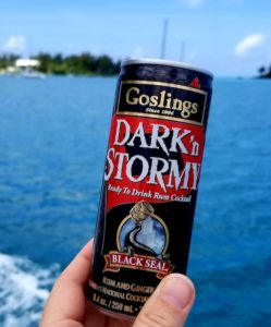 Canned Dark 'n Stormy