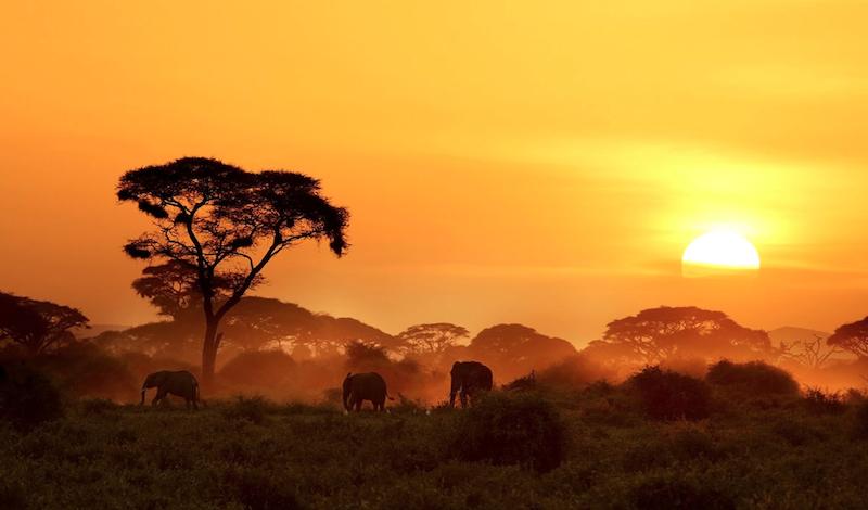 Kenya, Africa. Photo: Original Travel
