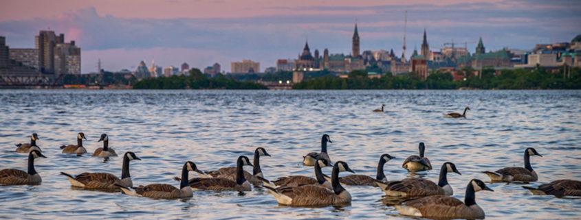 Sunset from the Bates Island in Ottawa, Canada