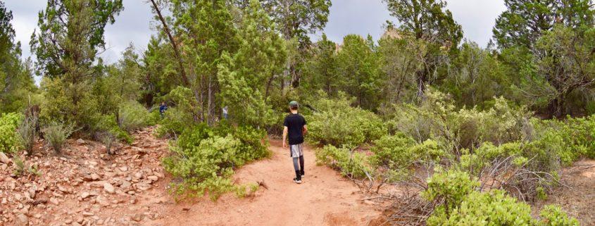 Flagstaff, Arizona.