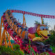 Rollercoaster at Walt Disney World