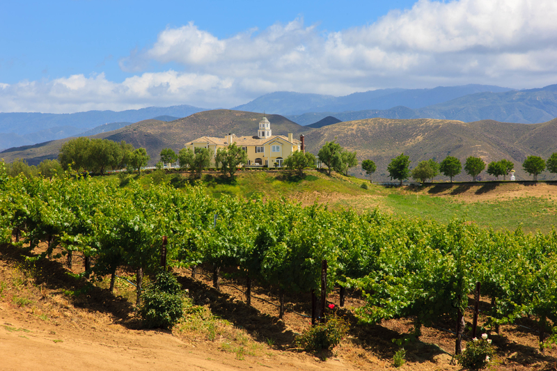 Winery in Temecula, California. Photo: Mel Surdin | Dreamstime.com
