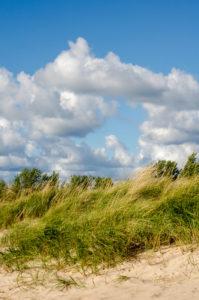 Indiana Beach Dunes.