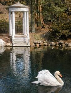 Morris Arboretum.